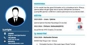 Muhasebeci Cv Manşet